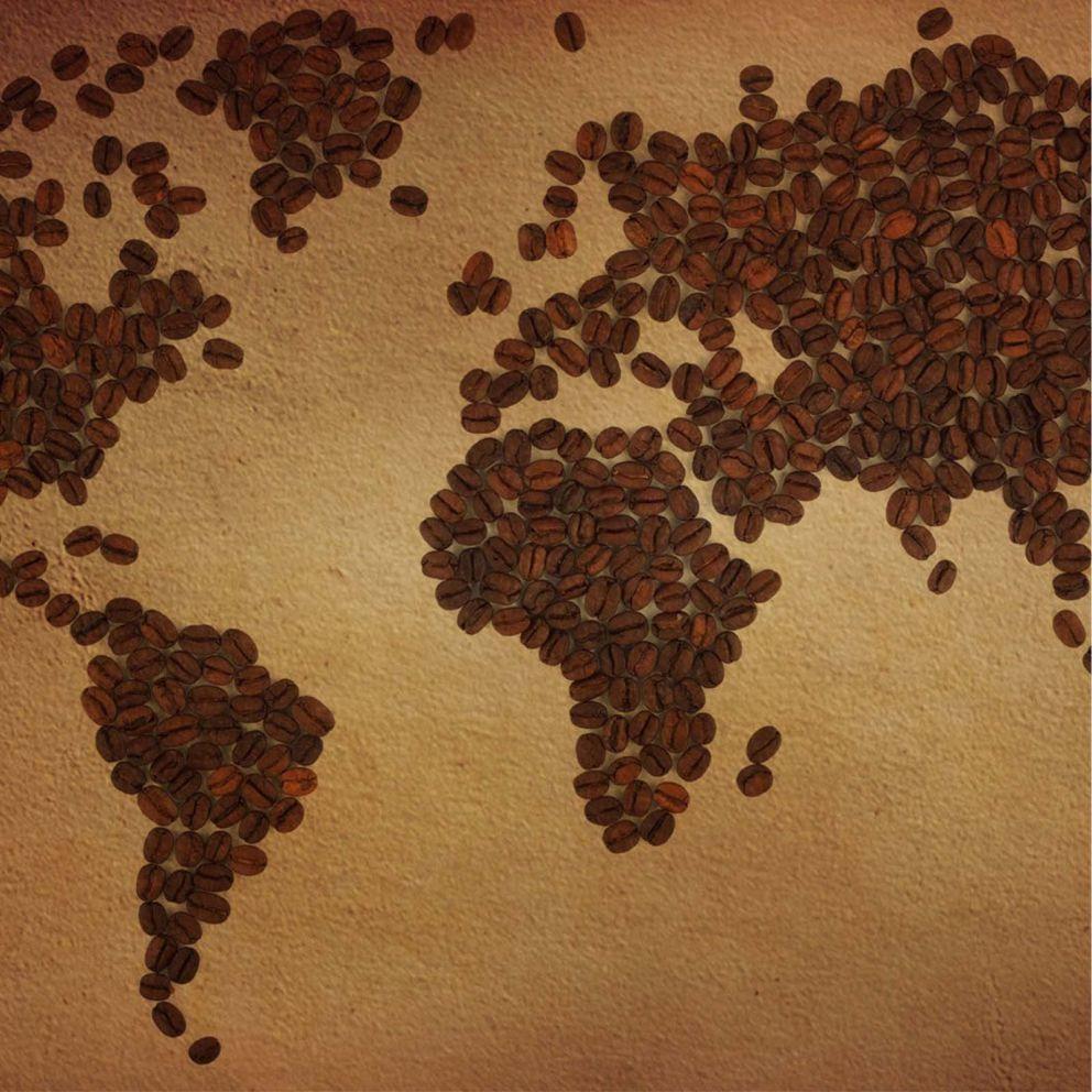 https://cafe-peru.com/en/wp-content/uploads/2020/04/exportacion-cafe.jpg