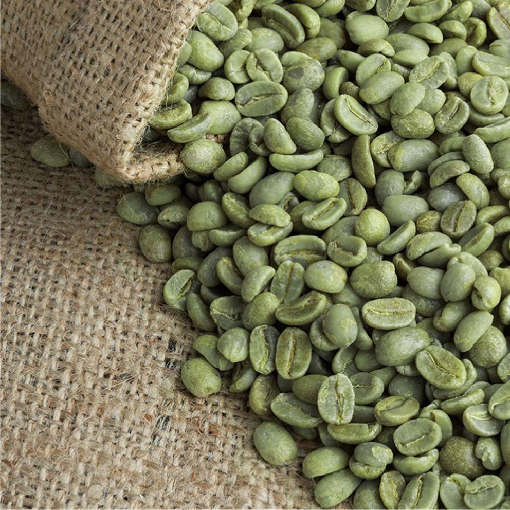https://cafe-peru.com/wp-content/uploads/2020/04/cafe-verde-2-1.jpg