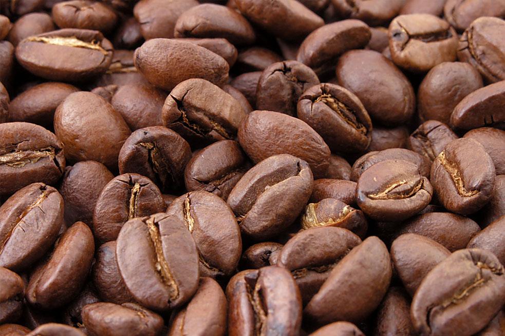 EXPORTACIONES DE CAFE LLEGARON A 295 MILLONES DOLARES
